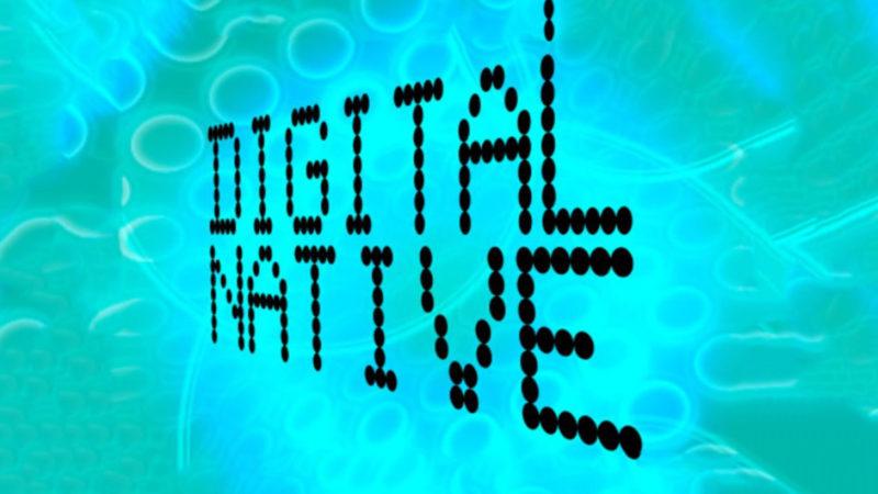 digital native